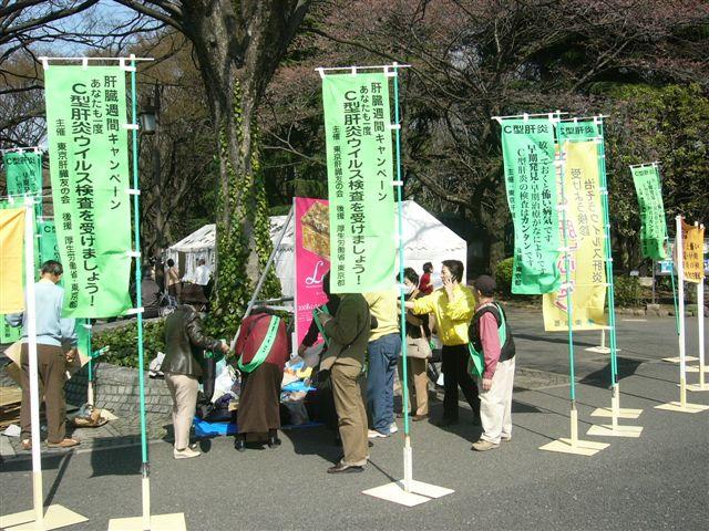 上野公園の模様